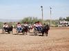 Southern Arizona Horse Expo_002