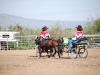 Southern Arizona Horse Expo_008