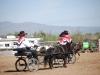 Southern Arizona Horse Expo_011