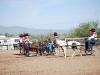 Southern Arizona Horse Expo_016