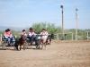 Southern Arizona Horse Expo_017