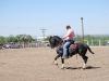Southern Arizona Horse Expo_105