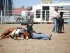 Southern Arizona Horse Expo_141