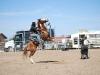Southern Arizona Horse Expo_150