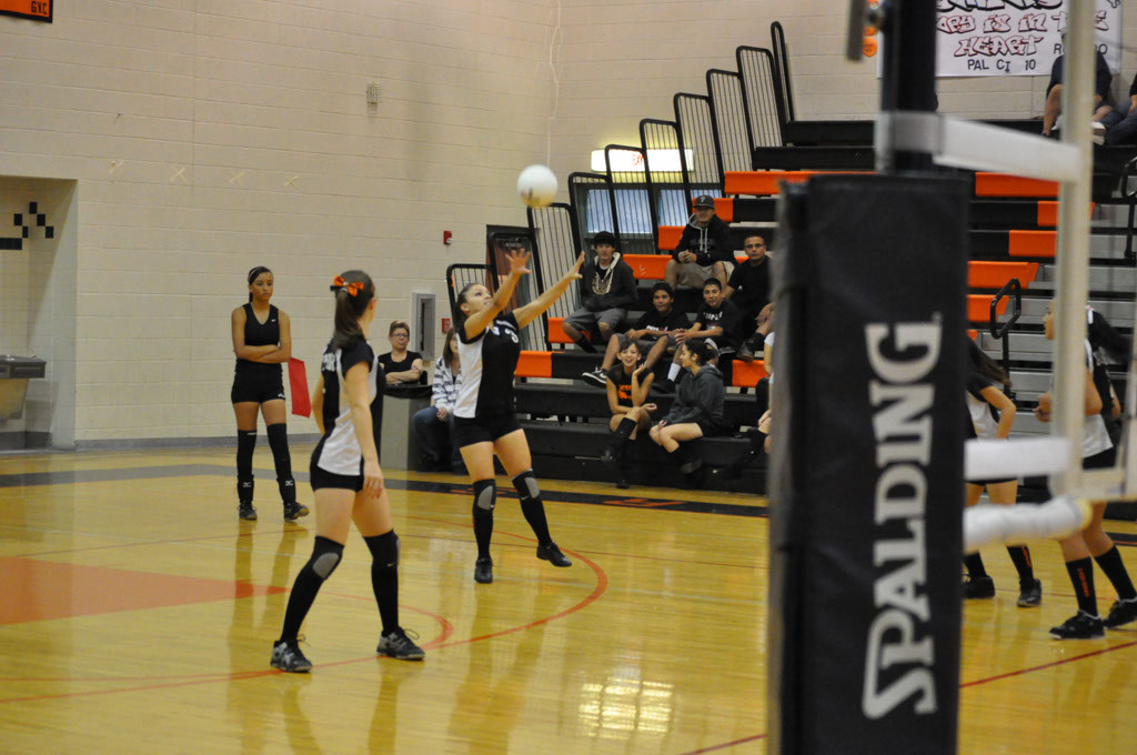 Superior Panthers_20111006_001