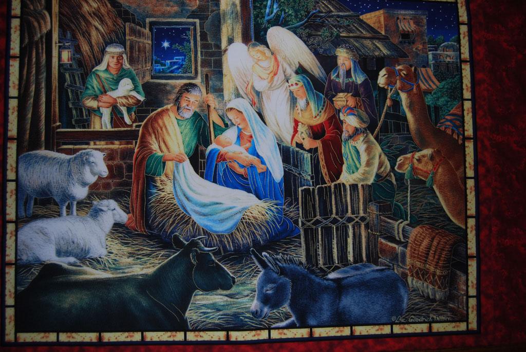 Nativity Display_221