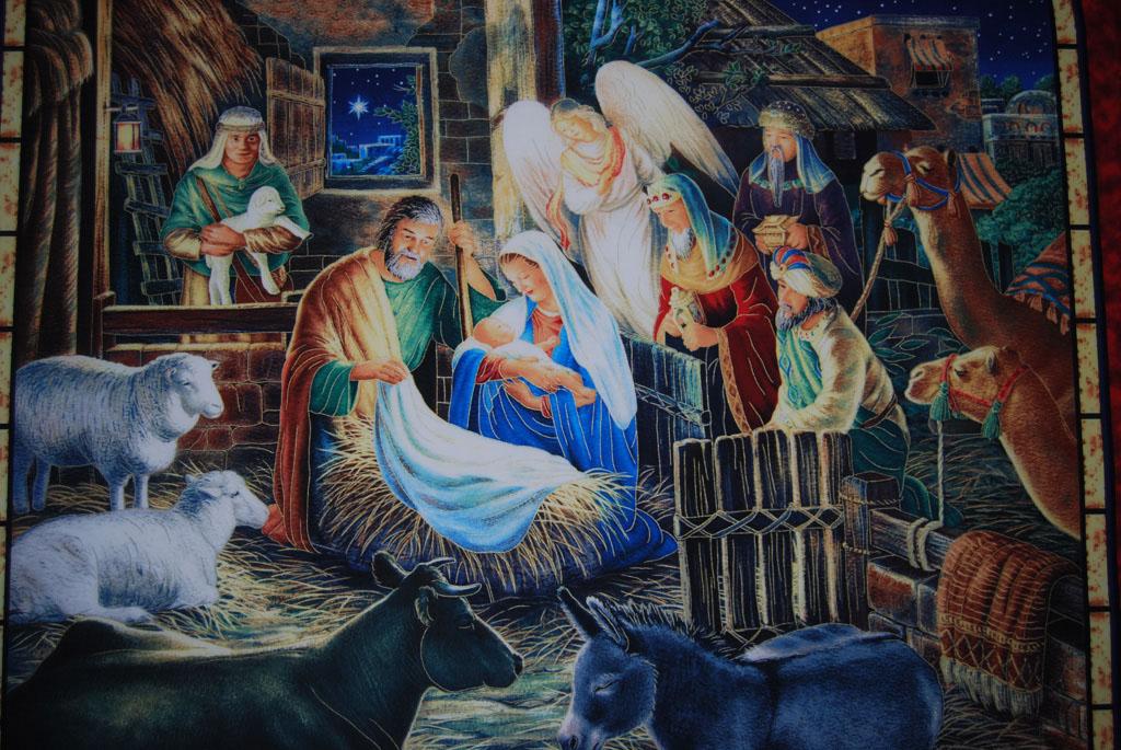 Nativity Display_222