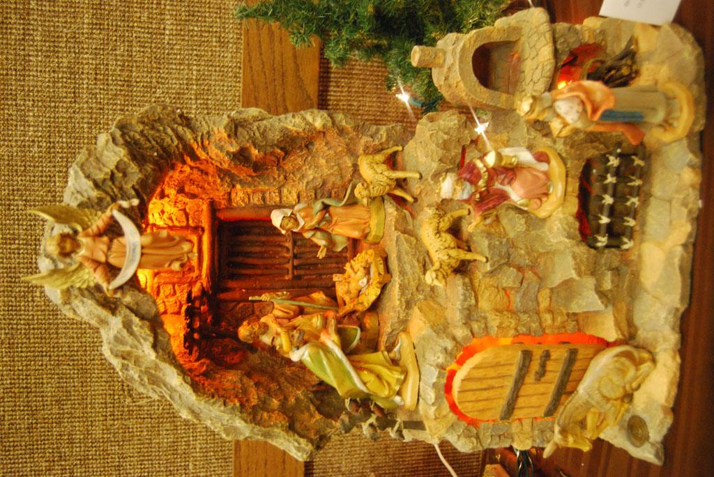 Nativity Display_258