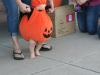 Great-Punkin_056