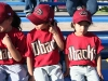 HW Little League_007