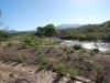 Aravaipa-Creek-Bridge_006