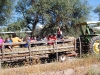 Carlink Ranch_079