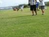 Hayden_Practice_012