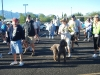 Saddlebrooke Walkathon_037