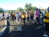 Saddlebrooke Walkathon_056