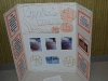 Science Fair SMHS December 2012_015