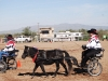 Southern Arizona Horse Expo_004