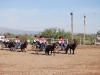 Southern Arizona Horse Expo_006