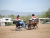 Southern Arizona Horse Expo_010