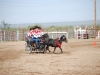 Southern Arizona Horse Expo_015