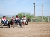 Southern Arizona Horse Expo_017