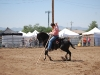 Southern Arizona Horse Expo_110