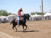Southern Arizona Horse Expo_111
