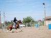 Southern Arizona Horse Expo_122