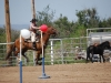 Southern Arizona Horse Expo_130