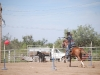 Southern Arizona Horse Expo_135