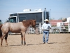 Southern Arizona Horse Expo_172