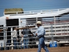 Southern Arizona Horse Expo_175