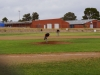 Superior_vs_San_Manuel_Baseball_2014_012