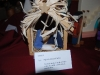 Nativity Display_233