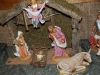 Nativity Display_268